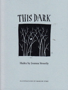 This Dark Cover